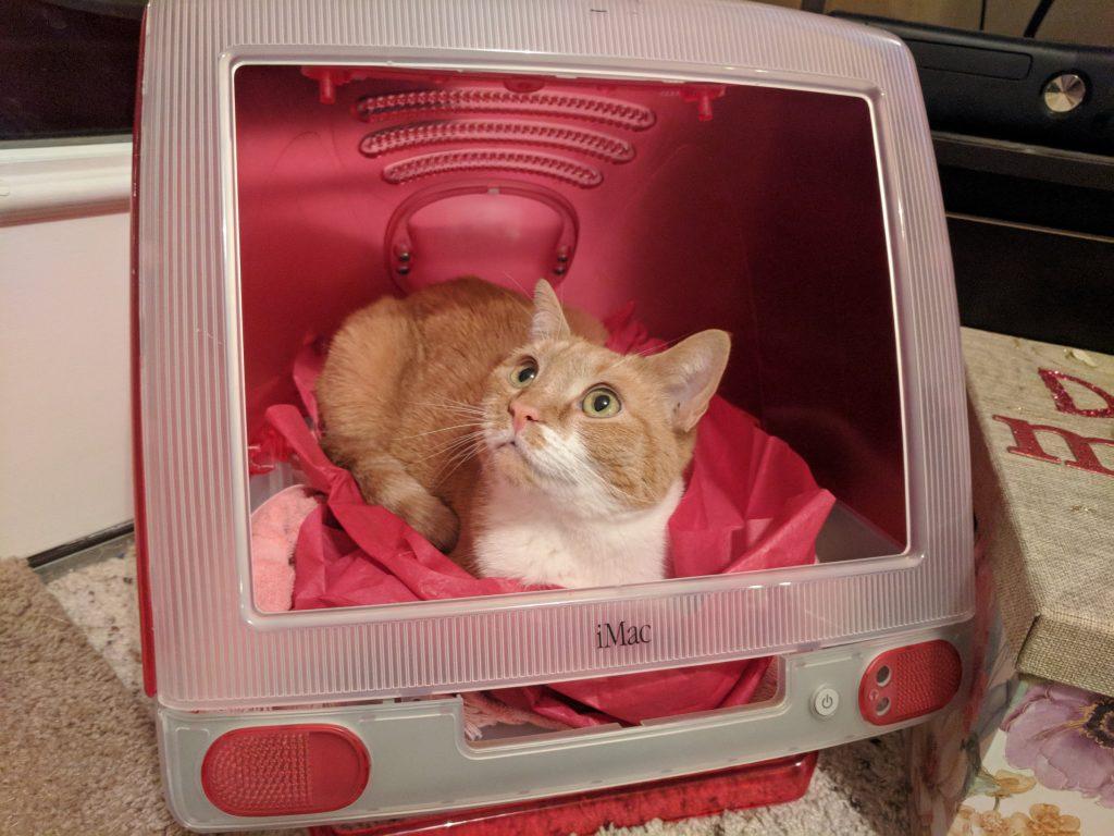 iMac cat house